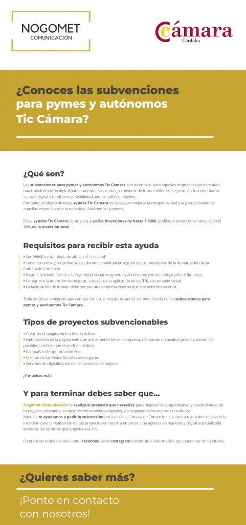 Infografía sobre las ayudas Tic Cámara